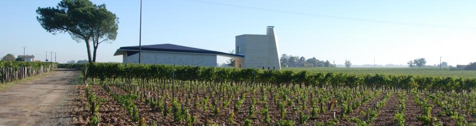 Het mythische wijndomein Le Pin in Pomerol